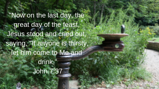 Now on the last day, the great day of the feast, Jesus stood and cried out, saying, _If anyone is thirsty, let him come to Me and drink.