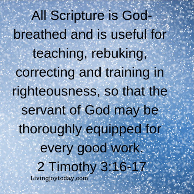 all scripture is god-breathed and is useful for teaching, rebuking, correcting and training in righteousness, so that the servant of god[a]may be thoroughly equipped for every